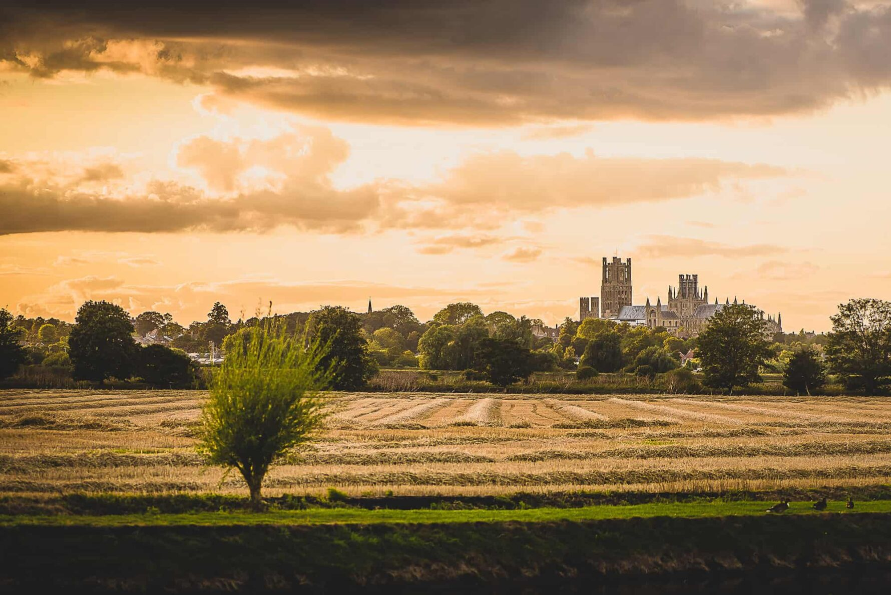 view to Ely Cathedral at The Old Hall wedding venue near Ely